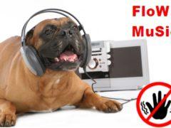 Жанры радиорекламы