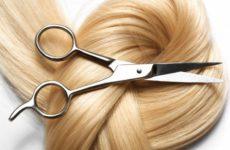 Какой налоговый режим выбрать предпринимателю при оказании парикмахерских услуг