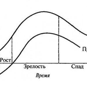 цикл товара график