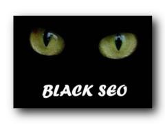 Практическое руководство по созданию сайтов (ч.6)