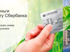 Перевод на карту Сбербанка через SMS по телефону