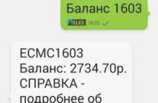 Как проверить баланс карты с помощью мобильного банка