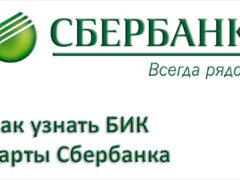 БИК карты Сбербанка