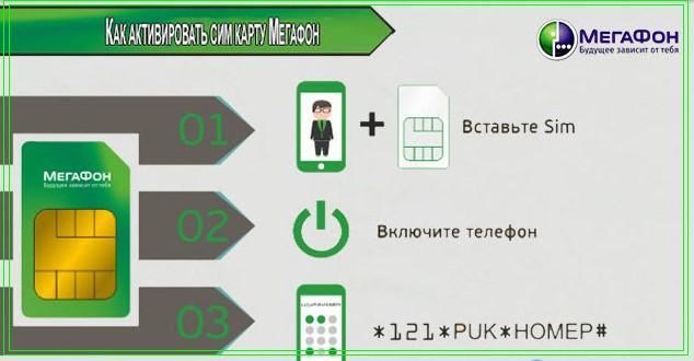 данные по номеру телефона мегафон