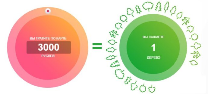особенности дебетовой карты Зеленый мир