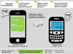 Оплата мобильного телефона через Сбербанк по смс на 900