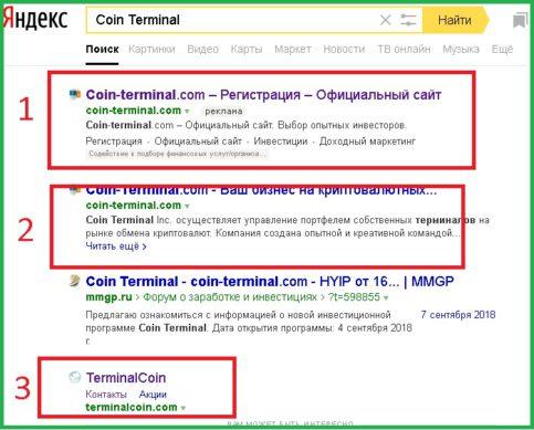 поисковая выдача по запросу Coin Terminal