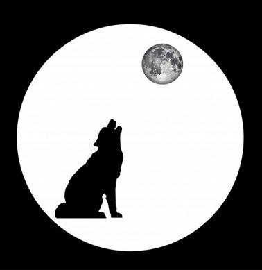 волк воет во сне
