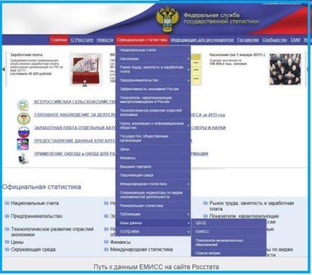 Как получить доступ к статистическим данным ЕМИСС на официальном портале ведомства