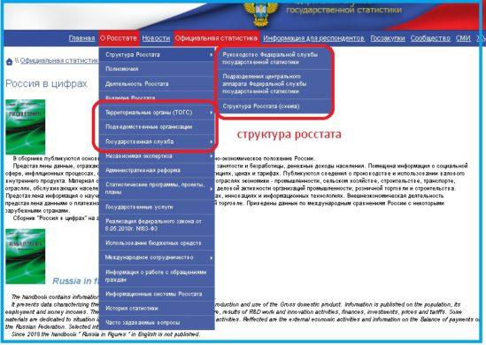 Структура Федеральной службы государственной статистики - раздел сайта
