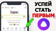 Социальная сеть Яндекс Аура — отзывы и мнения
