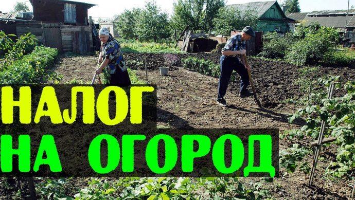 налог на огород в россии в 2019 году