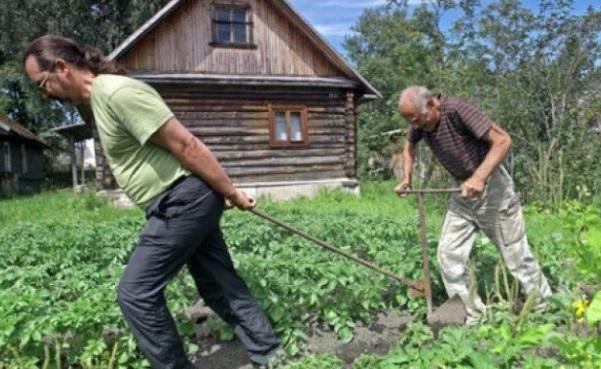 налог на садовые участки в РФ 2019 кто будет платить а кто нет
