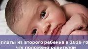 Выплаты за второго ребенка в 2019 году