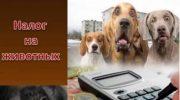 Будет ли введен налог на домашних животных в 2019