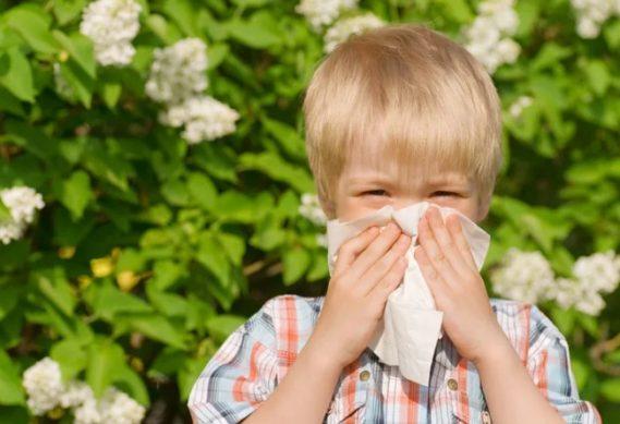 аллергия на пыль у детей и пыльцу