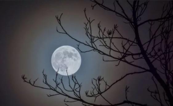брать в долг по лунному календарю в 2019 году