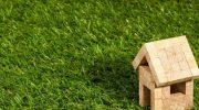 Какой газон выбрать для своего дома
