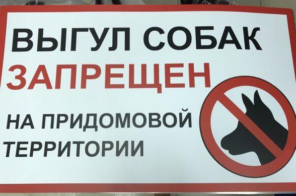 штрафы за нарушение закона о выгуле собак