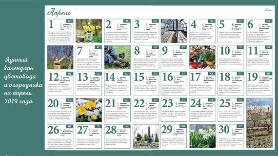 благоприятные дни для посадки огорода в апреле 2019 года