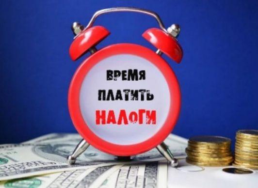 какие налоги нужно заплатить до 1 апреля 2019 года