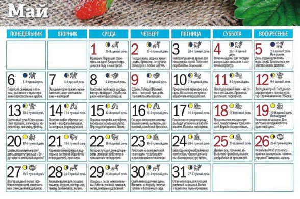 лунный календарь 2019 май