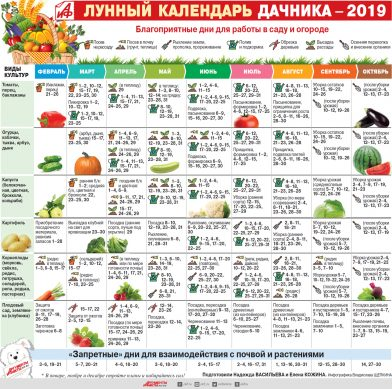 лунный календарь на 2019 год для садоводов и огородников