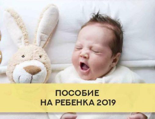 пособие на ребенка в украине 2019