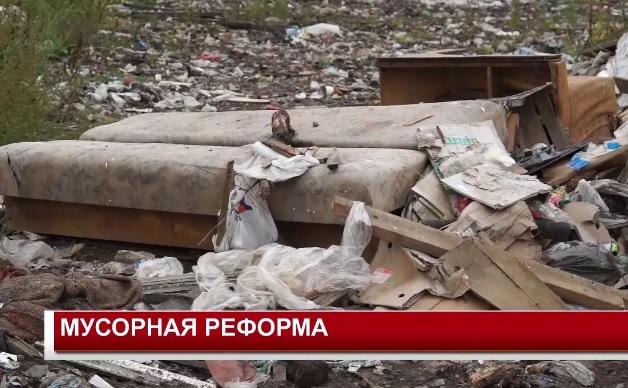 мусорная реформа 2019