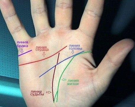 значение и толкование линии брака на руке