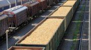 РЖД получит субвенции за льготную перевозку зерна