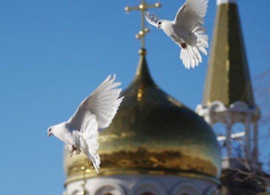 голубь на радоницу какая примета