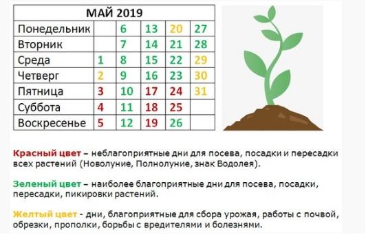 благопритяные дни для посадки в мае 2019 года