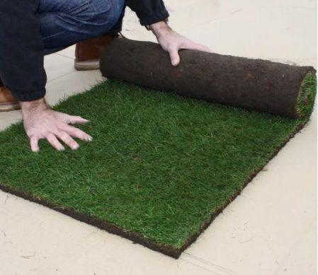 как выбрать и установить рулонный газон на участке