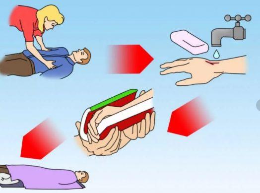 памятка что делать при укусе гадюки