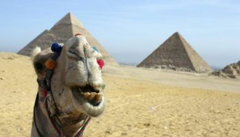 Открыли Чартеры в Египет 2019 для туристов россиян