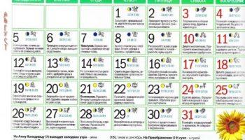 Лунный ежедневный календарь садовода и огородника на август 2019 года