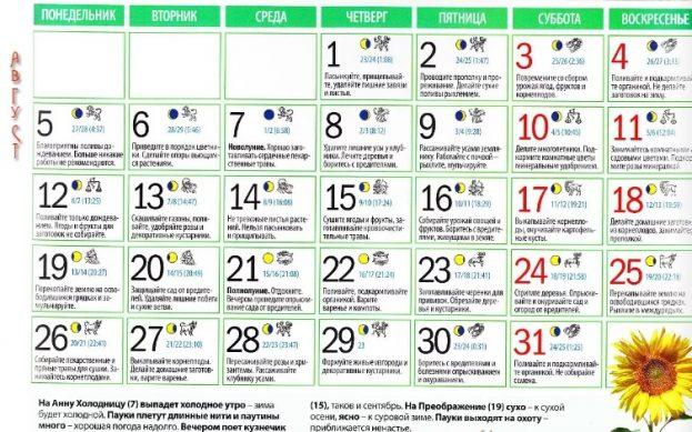 лунный календарь садовода на август