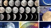 Лунный посевной календарь на июнь 2019: благоприятные дни для посадки