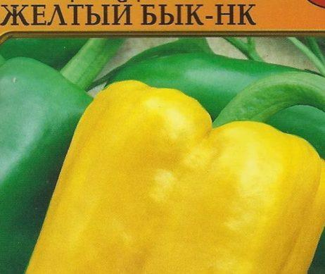 желтый бык сорт перца сладкого