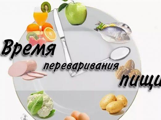 время переваривания пищи и продуктов