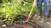 Осенние посадки и подготовка огорода к зимовке