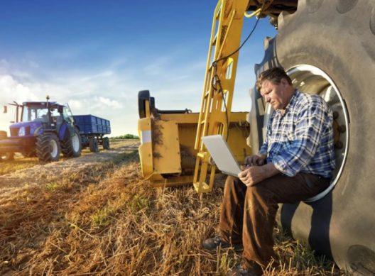 государственная программа начинающий фермер 2019