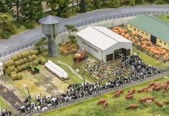 открываем ферму - как выбрать виды хозяйственной деятельности