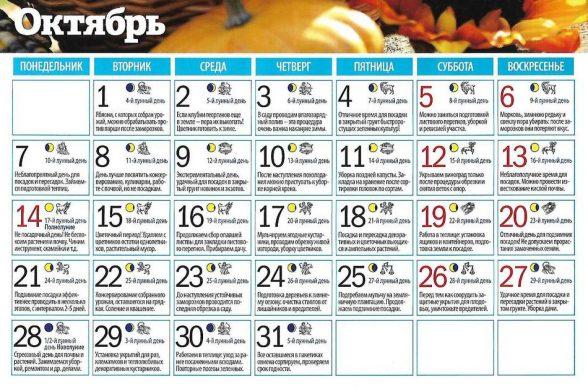лунный календарь посадок на 2019 год октябрь