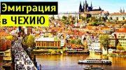 Миграция в чехию в 2020 году