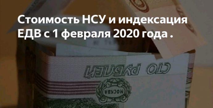 стоимость нсу в 2020 году с февраля месяца