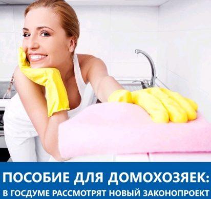 пособие для домохозяек
