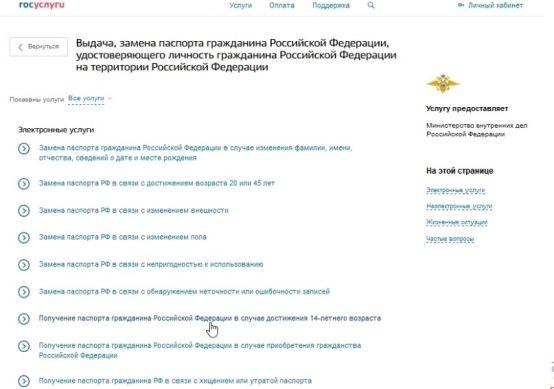 Паспорт РФ в 45 лет замена 2020-2021 - документы, госпошлина, новости