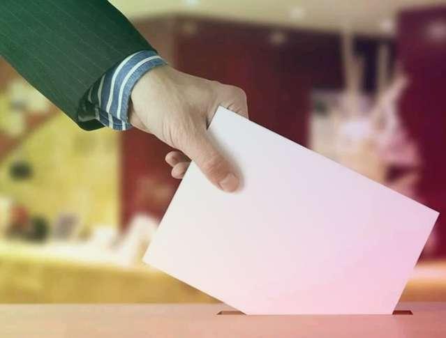 Голосование по Конституции могут перенести на 12 июня из-за эпидемии